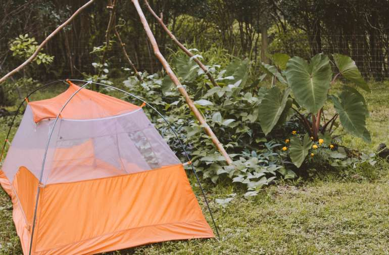 The second place I really loved was near her garden, beneath her bean pole teepee