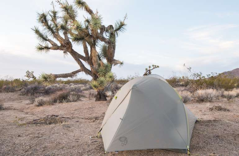 Two tent sites are nestled into the Joshua Trees, with a great view of the desert and nearby mountains.