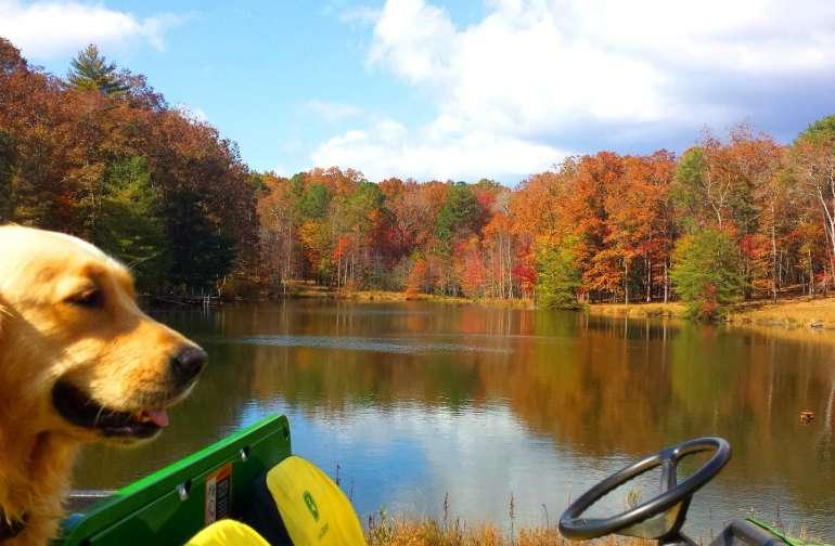 Lake in the fall...