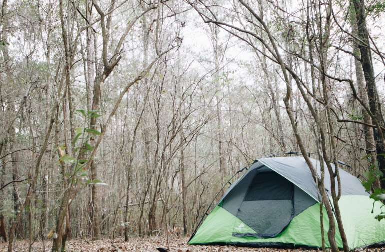 A perfect spot to pitch your tent under the stars (close to the creek).