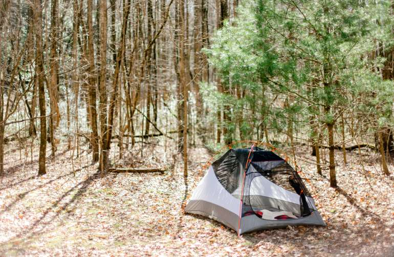 Pick a tent spot in the open clearings or beneath the trees.