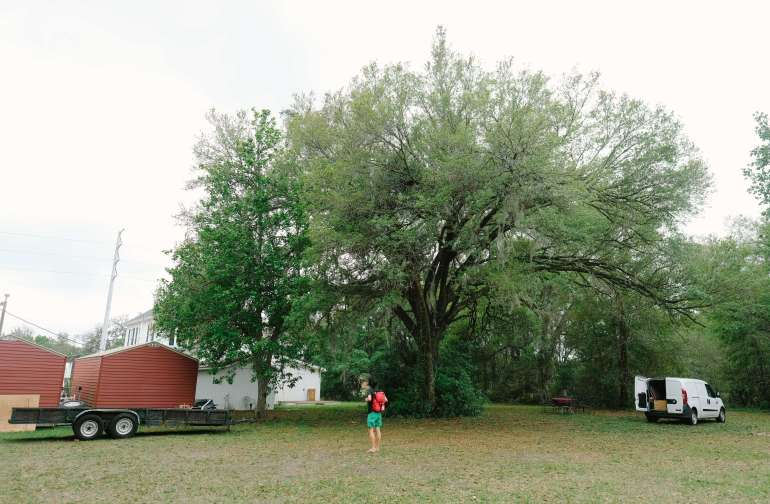 Under this tree is where we set up camp.