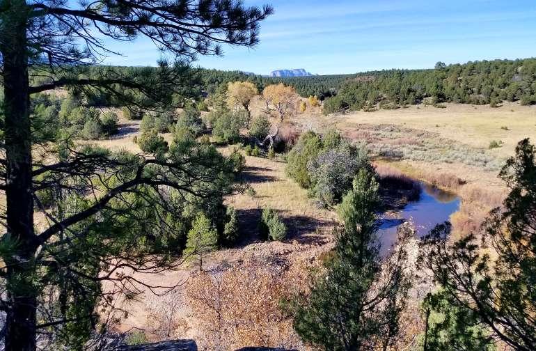 Jackalope Ranch Tent Site