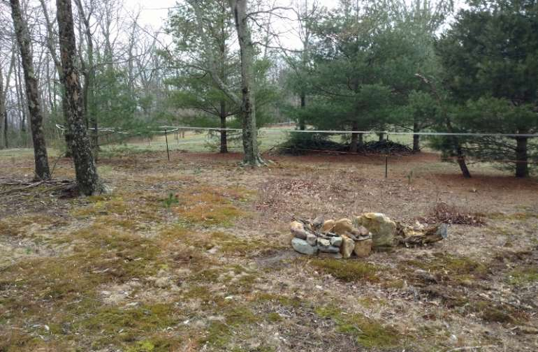 Campsite 1 is located right off the driveway and borders our horse pasture.  This site is close to our neighbors property so we ask for quiet time from dark to dawn.