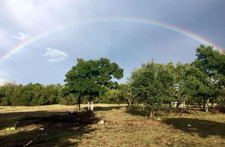Shoshana Shalom Farms
