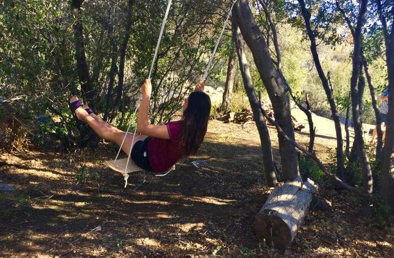 Swing among the trees