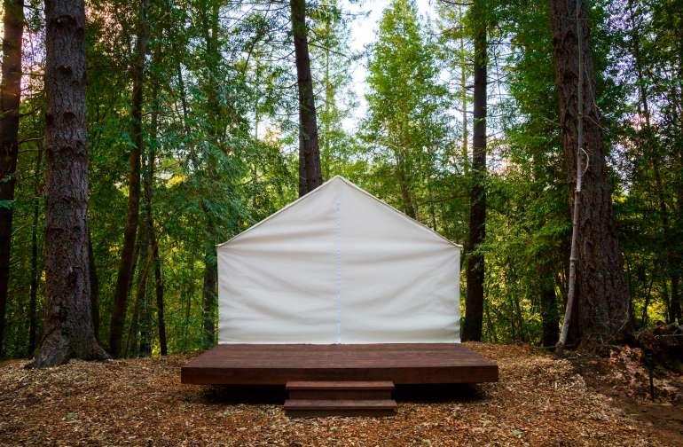 Shelterwood- Juniper Camp 2