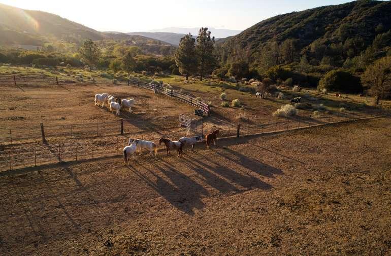 A great overlook across pasture.