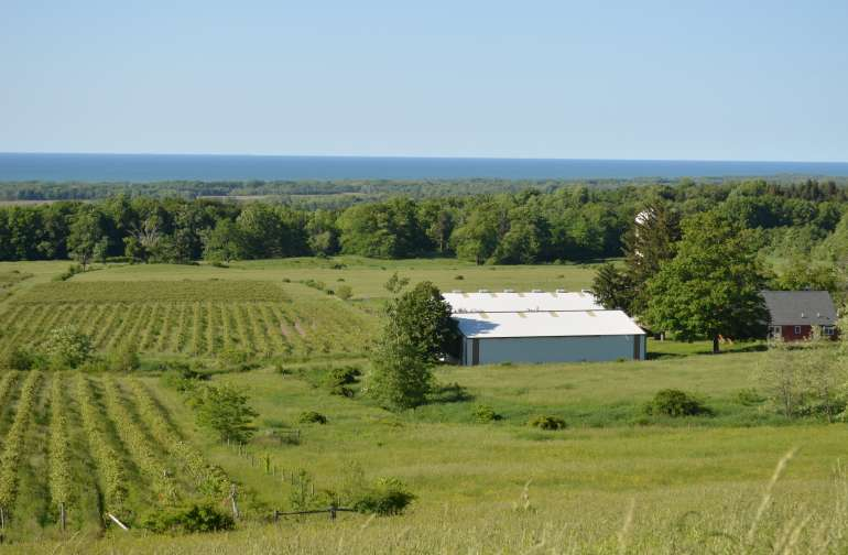 a view of Lake Erie from Toboggan Hill Farm