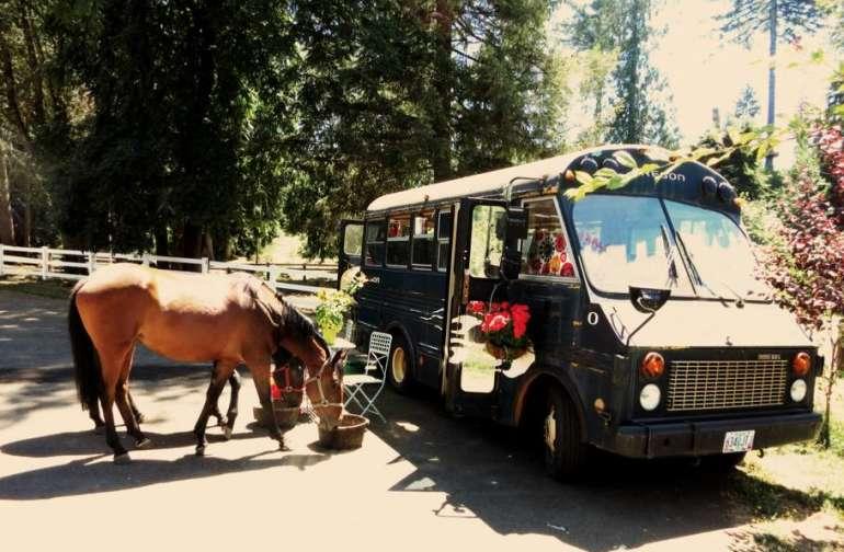 the Short Bus at Corbett Farm