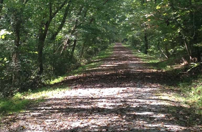 Deep River Rail Trail outside our back door