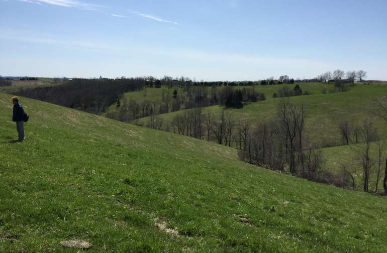 Sorin Hills 2