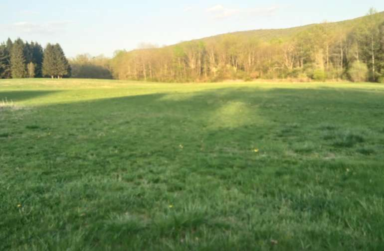 20 Acres of neatly kept lawn at  the center of the property gives a prospective look of the valley by  the Kittatanny Mountain.