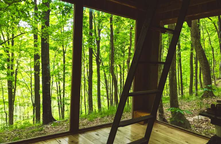 Best Camping In And Near Great Smoky Mountains National Park