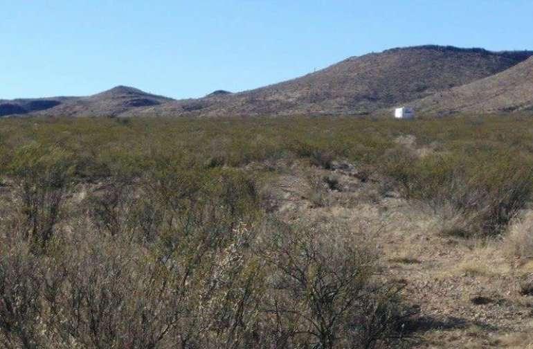 True Sonora Landscape. Lobo,  TX