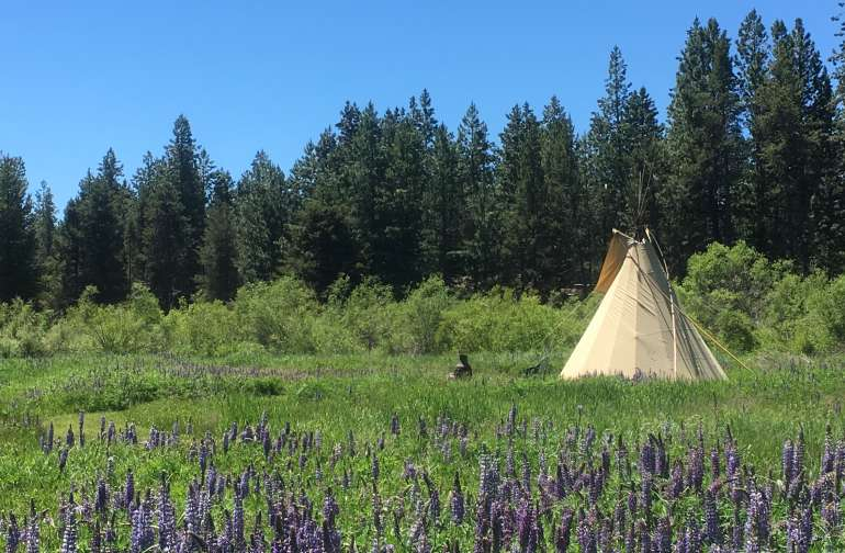 Alpine Meadow is the perfect setting.