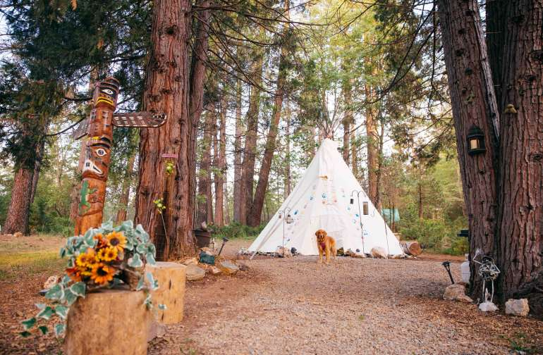 The Tipi and the Totem pole! Love it! PS: Pets no longer allowed, unfortunately! PS: Pets no longer allowed, unfortunately!
