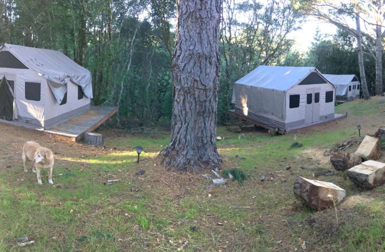 Our 4 Tent Cabins