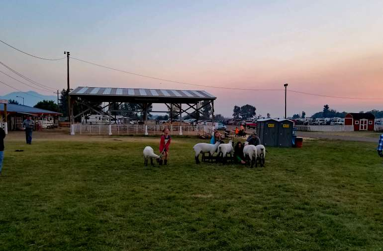 Camp at Ravalli County Fairgrounds