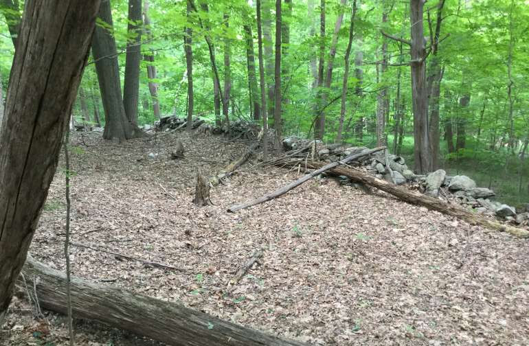 Over 100 acres of woodland surrounded by the Appalachian Trail.