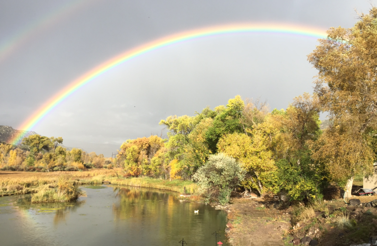 Rainbow at pay fishing pond.
