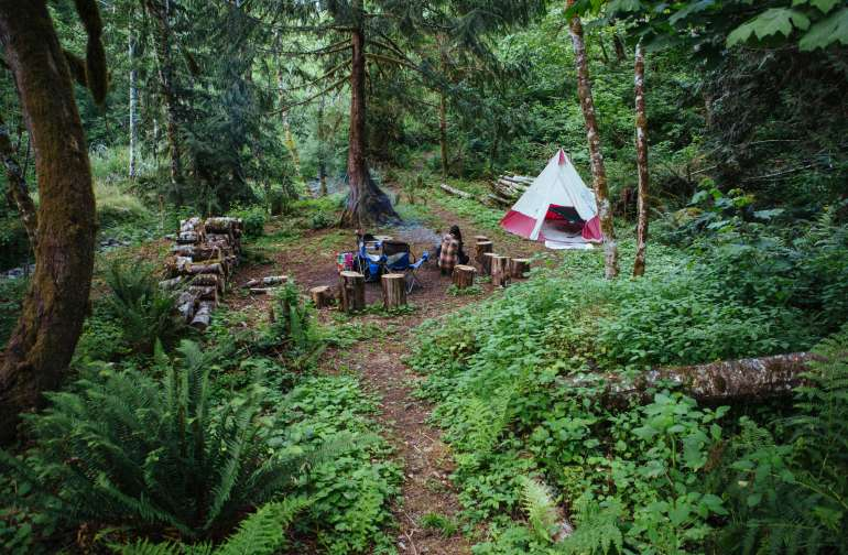 forest lodging teepee