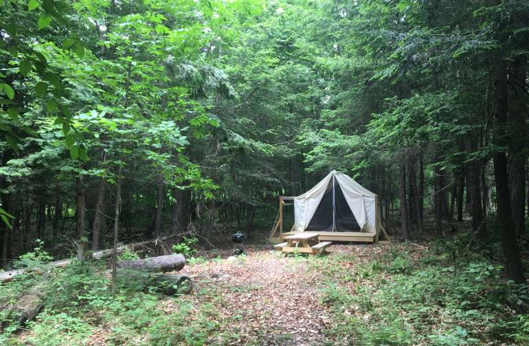The Woods site is set well back in the woods, completely surrounded by trees