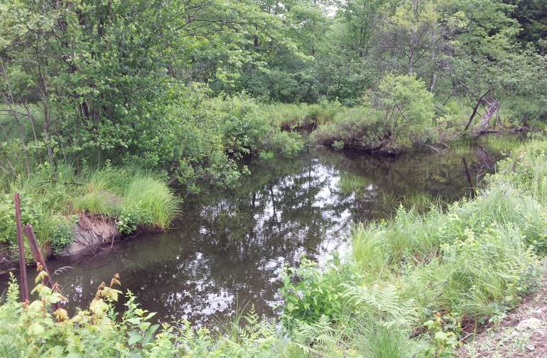 Spring fed brook widens to a small pond and there is a level area the size of a small RV or van or car where you can just hangout by the water and have a fire.  Water is always clean never any algae slow moving stream.