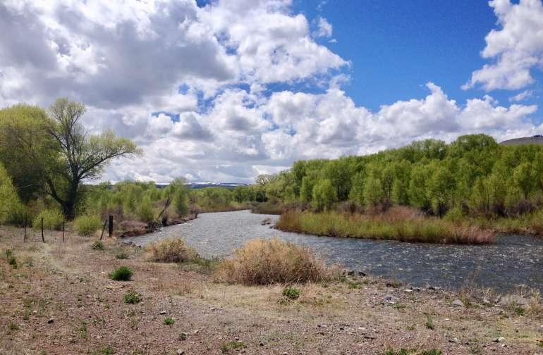 Conejos River runs thru the ranch