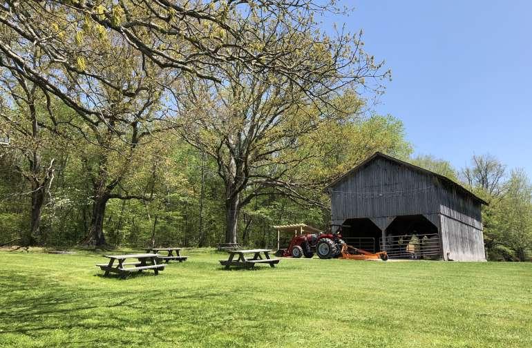 Whimsical Hilltop Farm