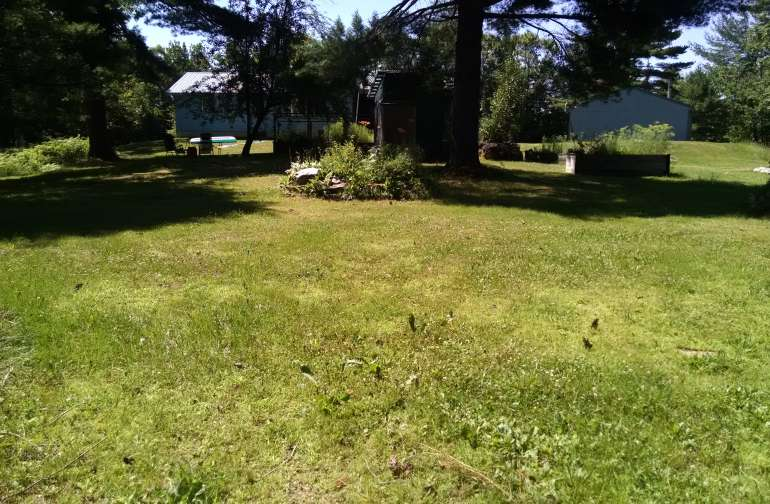 Center of 1 acre backyard