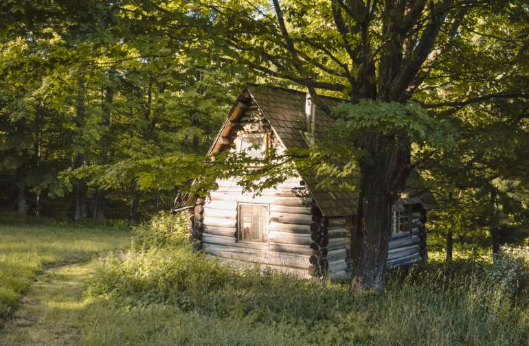 The cabin is secluded by trees and wildflowers.
