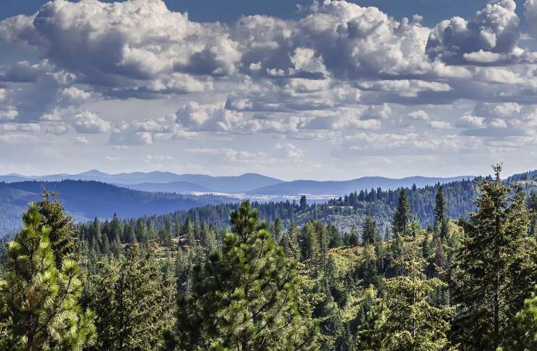 Stunning views to the south of Coeur d'Alene await you!