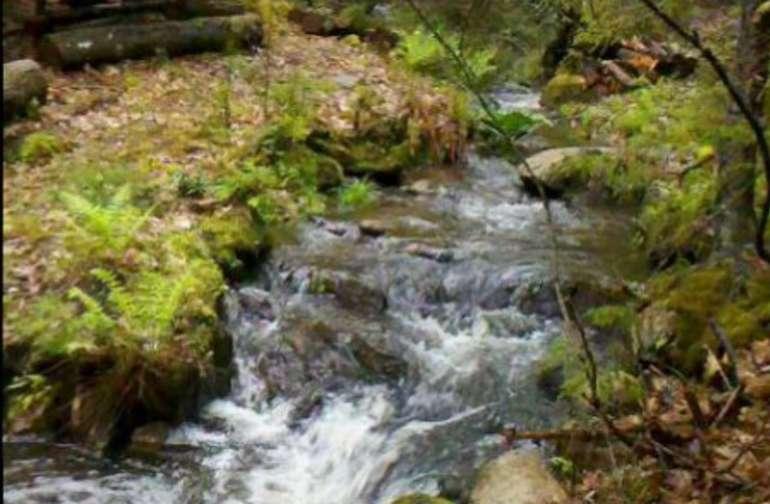 Rushing stream and waterfalls near sites