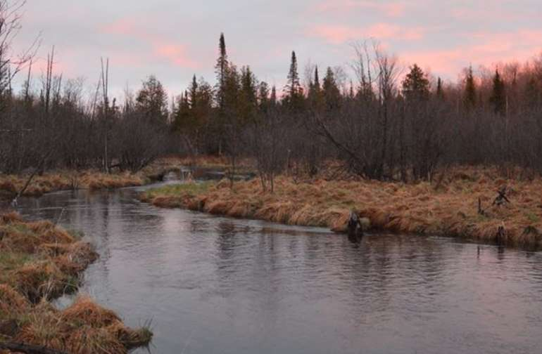 High waters in spring on the West Branch of the Sturgeon River,  A .4 mile walk from your campsite.