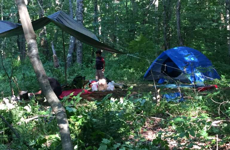 Forest camping spaces