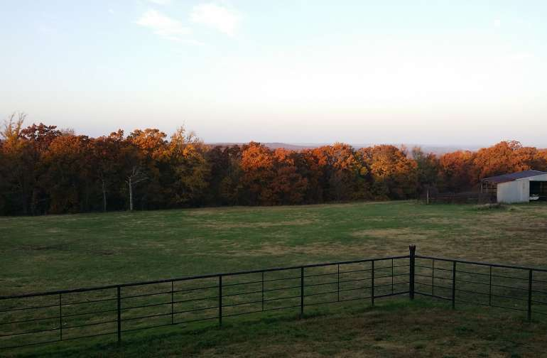 Fall view from the house
