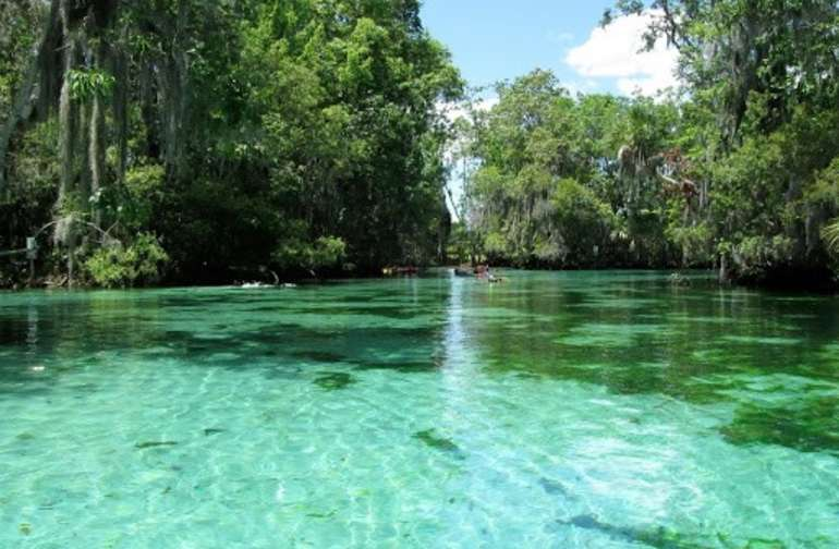 Secluded FL Getaway