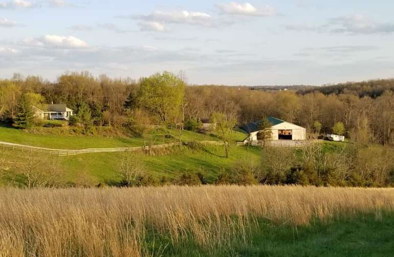 Our home and barn are centrally located on the property. This is the view from the ridge line.