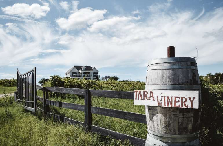 Entrance to TARA Vineyard & Winery estate.