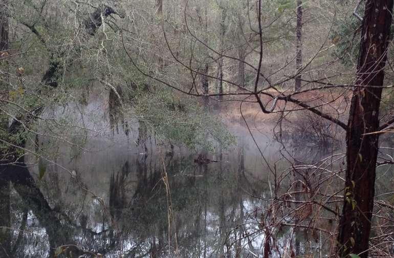 Black Creek Retreat