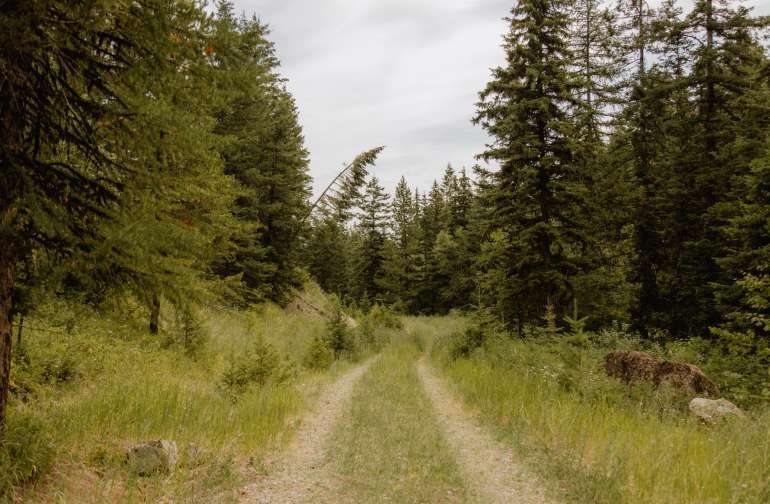 the 30 best campgrounds in montana. Black Bedroom Furniture Sets. Home Design Ideas