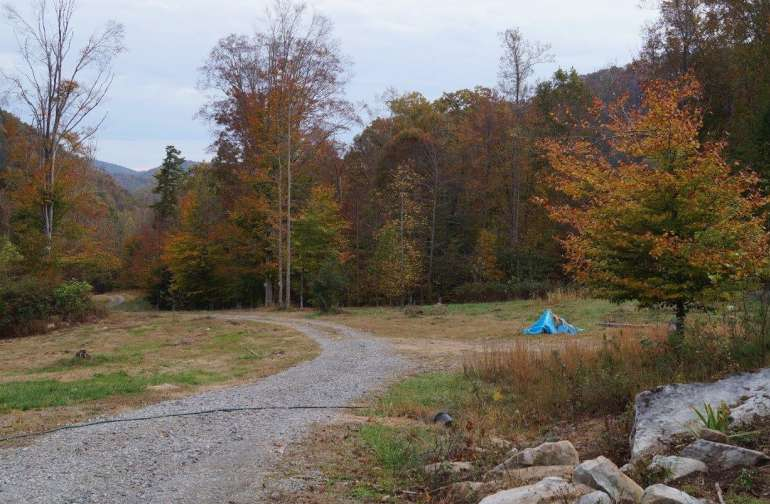 We have open fields for tent camping, surrounded by forest. Beautiful mountain views.