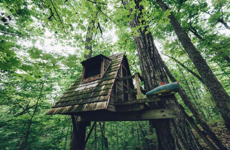 forest lodging treehouse