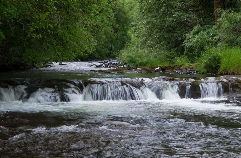 Abiqua Creek Serenity campsite