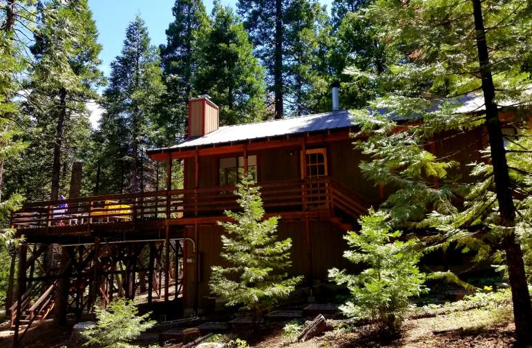 Big Trees Deck! And a Perfect Little Cabin!