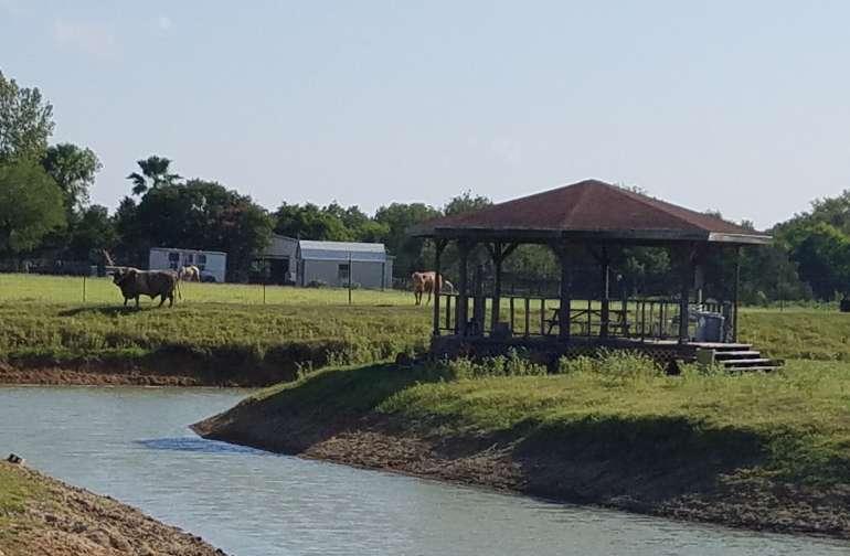 Camp PowWow