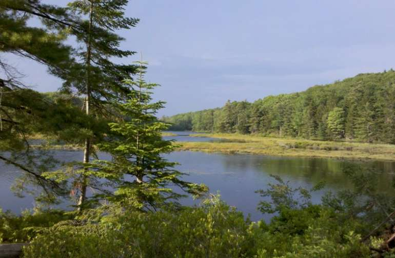 Scenic wilderness feel yet near civilization