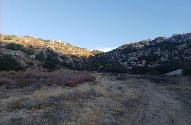 The Canyon @ Saddle Up Horse Rescue