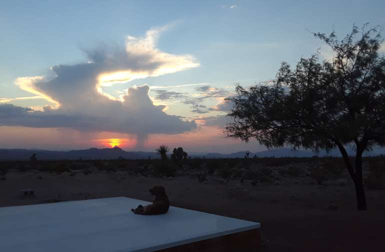 Mesquite sunset!